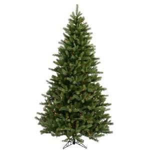 Vickerman 16086   6.5 x 48 Black Hills Spruce 500 Multi Color Lights