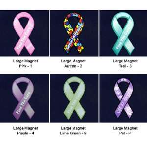 Awareness Ribbon Magnets   Large   Assorted Colors (30