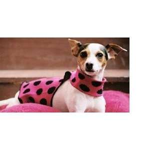 Polka Dot Wrap, Fuschia Pink (Size 6   8) Kitchen