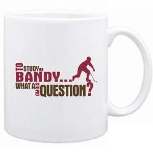 New  To Study Or Bandy  What A Stupid Question ?  Mug